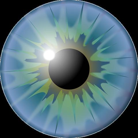 œil schéma œil vision je vois flou  vision floue