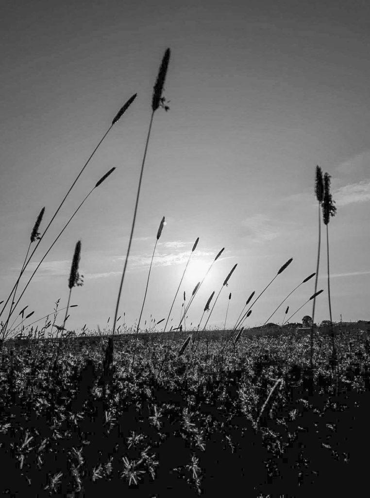 noir et blanc  insolite œil du photographe  David RAUTUREAU