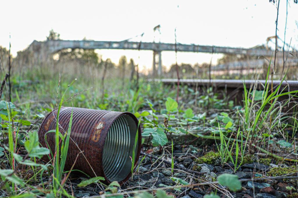 environnement nature geste écologie pollution agir prise de conscience  désolation éducation David RAUTUREAU
